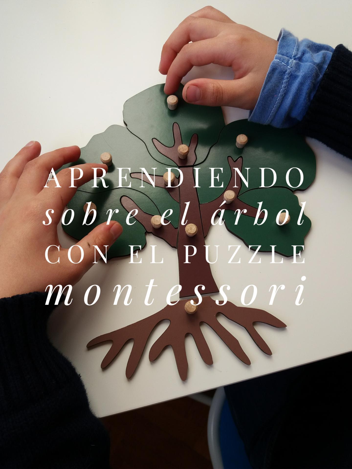 aprendiendo sobre el árbol con el puzzle Montessori